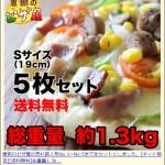 恵那のピザ